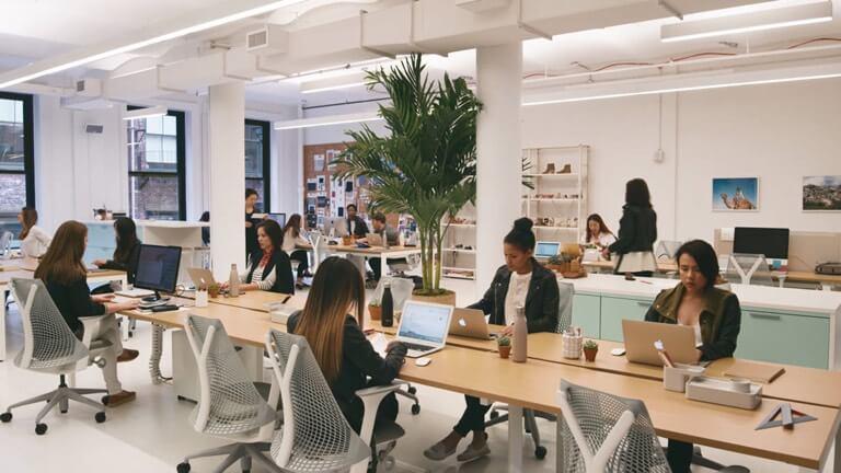 Startups & Entrepreneurs